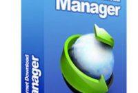 IDM (Internet Download Manager)