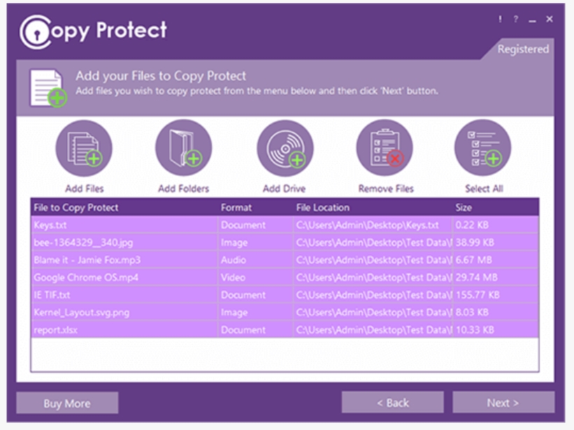 Copy Protect Latest Version